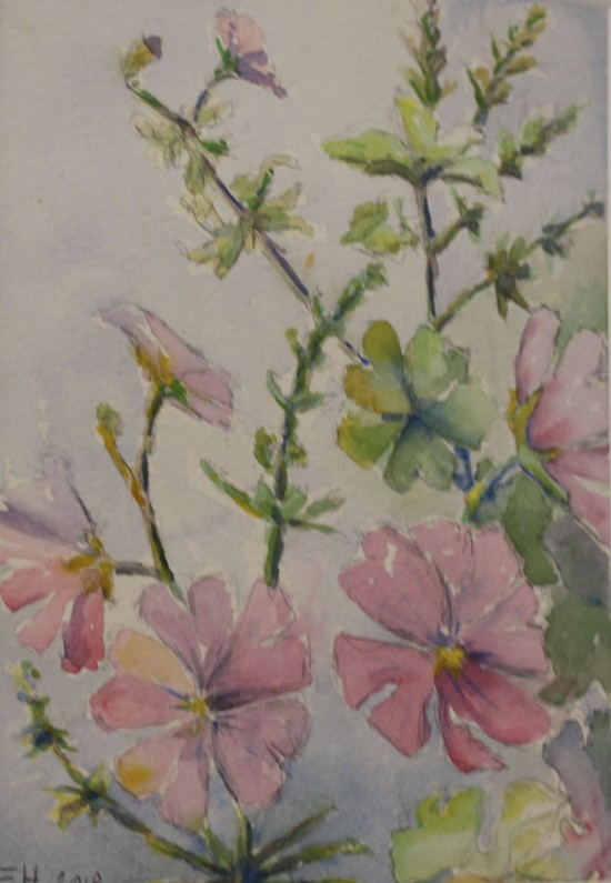 Rosa blommor av Eva